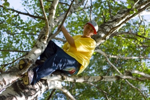 ivan-on-tree